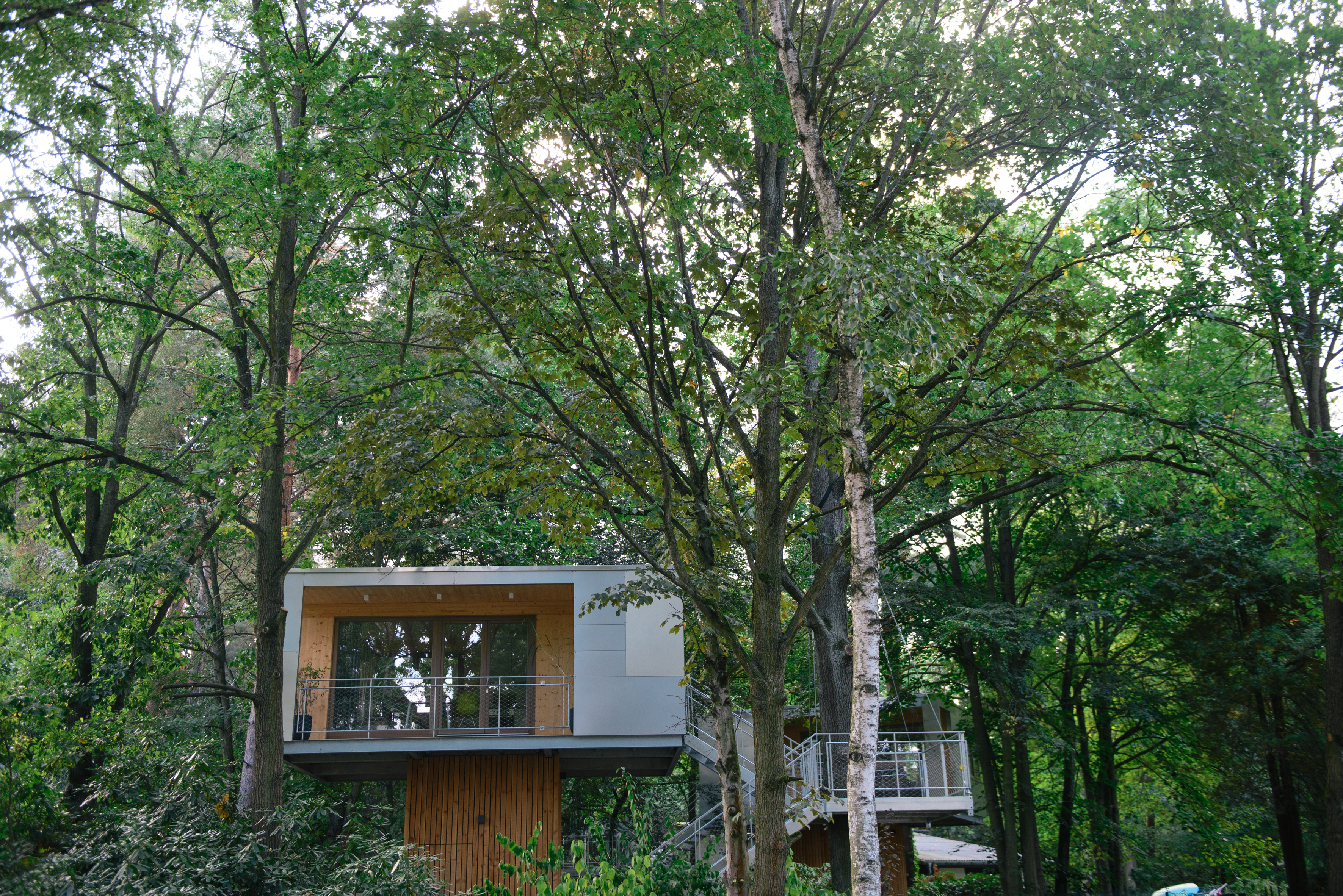 Das Baumhaus (Foto: Lena Ganssmann)