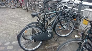 Wir schicken unser Fahrrad auf die Reise