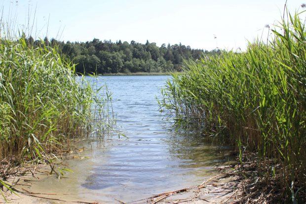 Am Grossdöllner See