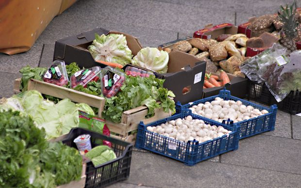 Foodsharing, Neue Esskultur, Nachhaltig Kochen