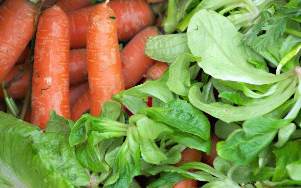 Foodsharing, Nachhaltig Kochen