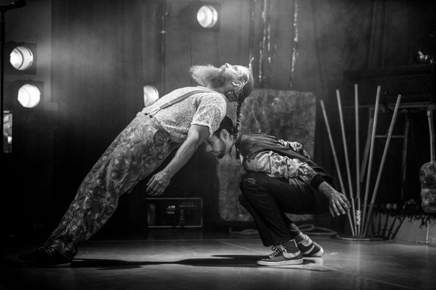 """Hält die Balance? """"Unterart"""" im Chamäleon – Foto: Mats Bäcker"""