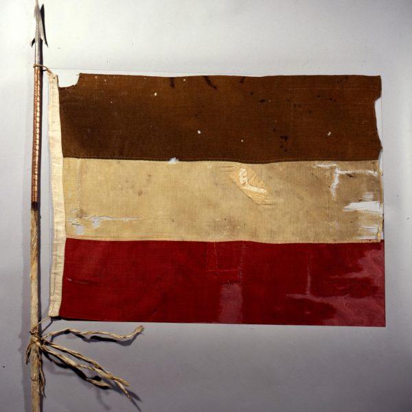 Deutscher Kolonialismus in Deutsch-Südwestafrika, Kamerun, Togo, Namibia, Deutsch-Ostafrika, Neuguinea, MarshallInseln, Kiatschou, Mikronesien, West-Samoa