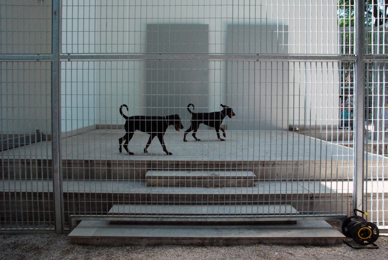57 biennale venedig zitty. Black Bedroom Furniture Sets. Home Design Ideas