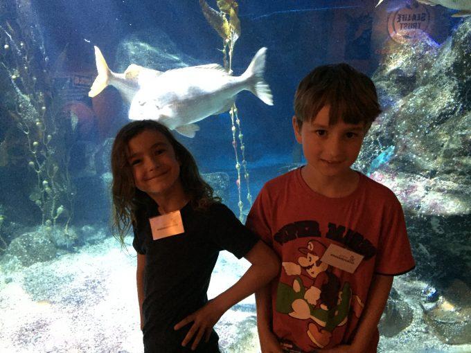 ZITTY-Kinderreporter zu Besuch im AQUADOM und Sea Life Berlin