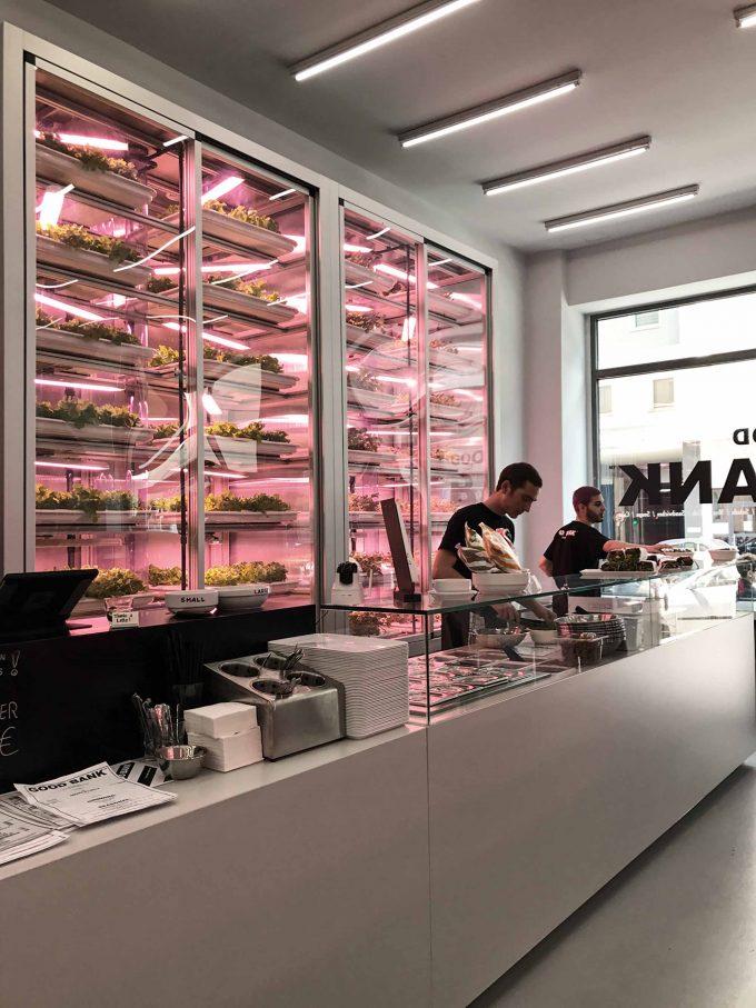 Vertikal-Farm-to-Table: Im Good Banks geht der Salat die Wände hoch.Foto: Good Bank