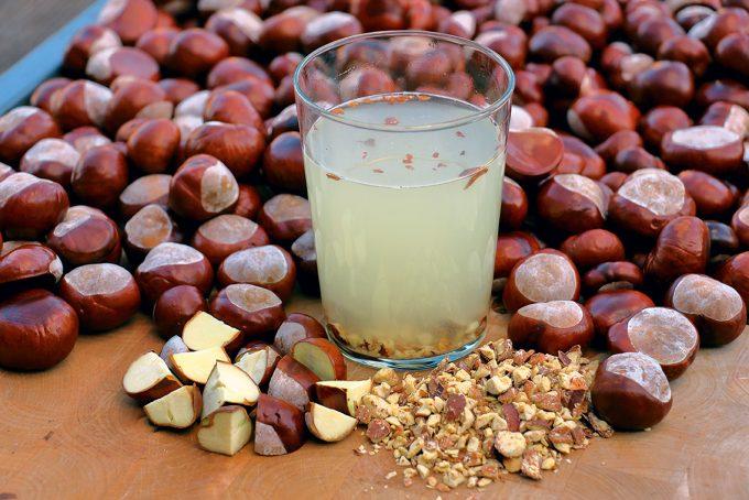 Aus Kastanien kann man Waschmittel herstellenFoto: smarticular.net