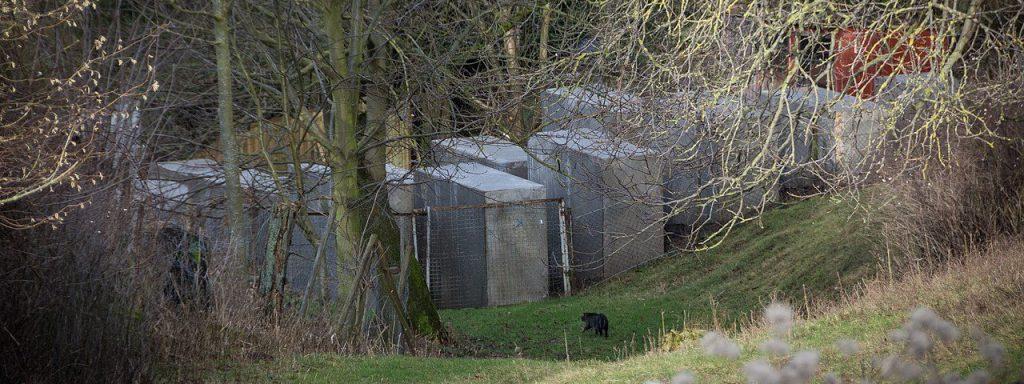 Der Nachbau des Holocaust-Mahnmals in Bornhagen – Foto: ZPS