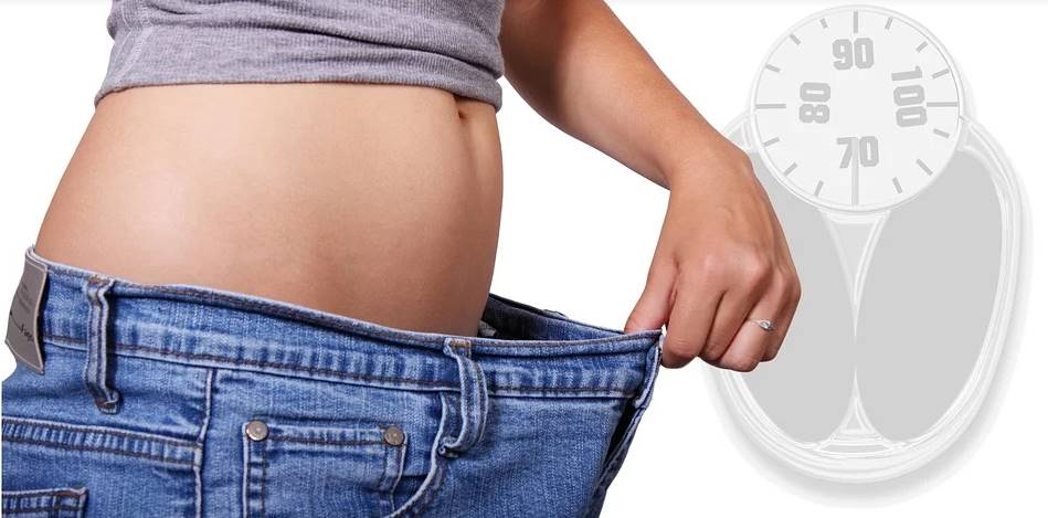Computerprogramm zur Gewichtsreduktion und Muskelmasse